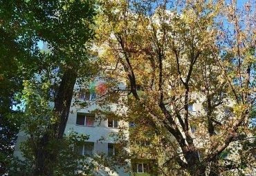 Calea Bucuresti: apartament 3 camere, etaj 1, decomandat